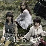 風は吹いている/AKB48画像